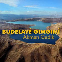 akman_gedik